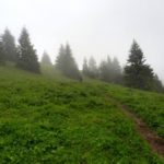 21. ...zejście z północnej rakytovskiej przełęczy...