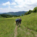 46. Z przełęczy Chyžky schodziliśmy żółtym szlakiem...