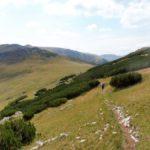 22. Przed nami przełęcz Paltina i początek gór Godeanu.