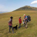 31. Pasterze potwierdzili obecność potoku...