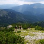 7. Wyżej lasu pięliśmy się ścieżką w kosówce...