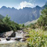 10. …a ścieżka zbliżyła do potoku Jaworzynka…