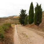 69. Kilka kilometrów szłam oryginalną drogą rzymską Via Traiana…