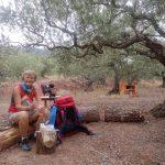 71. Drugie śniadanie jadłam na polu biwakowym w gaju oliwnym.