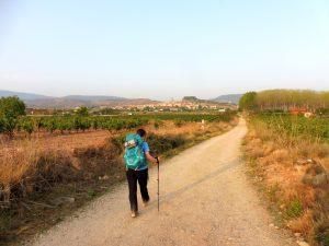 117. Przed nami ślicznie położone miasteczko Navarrete…