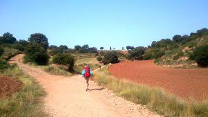 126. …podchodzimy na niewysoki grzbiet Alto de San Anton (699)…