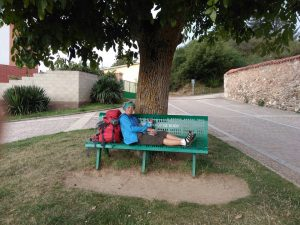 156. …odpoczywałam i jadłam drugie śniadanie na skwerze przy San Anton.