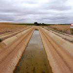 54. …pociętą kanałami nawadniającymi.