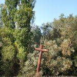 79. Krzyż w miejscu klasztoru Santa Maria de las Tiendas.