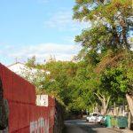 34. Nad koronami drzew widać już wieże katedry w Pampelunie…