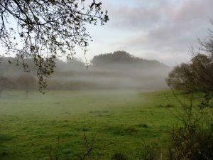 104. …i poranne mgły ścielące się w dolinach…