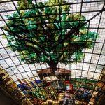 107. W gmachu witrażowy wizerunek starego drzewa…