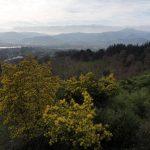 12. Z tarasu widać wąską zatokę na granicy Francji i Hiszpanii.