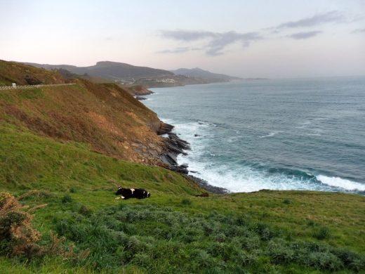 154. …kierując na ścieżkę wzdłuż wybrzeża.
