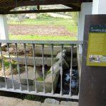 154. …i zabytkową pralnię wiejską przy potoku.