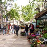 183. …na La Ramblę, główny trakt spacerowy stolicy Katalonii…