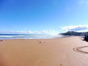 54. …z widokiem na plażę skąpaną przedpołudniowym słońcem.