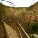 94. Drewniane schody w lesie uchroniły nas od błota.