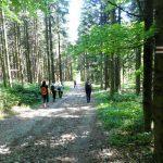 38. …schodziliśmy na Przełęcz Jaworzyce z widokiem na…