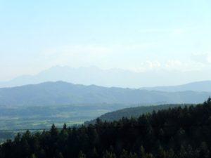 42. Wracając grzbietem Litacza podziwialiśmy Tatry na horyzoncie.