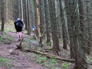 81. Jeszcze tylko krótkie podejście ciemnym lasem...