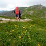 39. …na Litworową Przełęcz obok żółtych omiegów…
