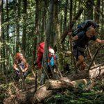 3. …w górę stokiem porośniętym lasem…