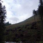 2. …na ogołocony dawnym wiatrołomem stok.