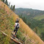 8. …lub ścieżką wśród wysokich traw.