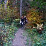 58. W końcu z lasu wyszliśmy wprost…