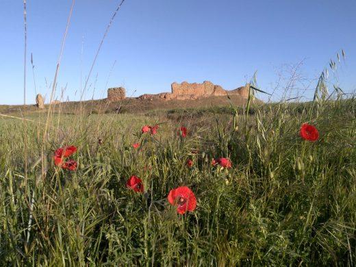96. Na 10-tym km mijaliśmy malownicze ruiny miasta Castrotorafe…